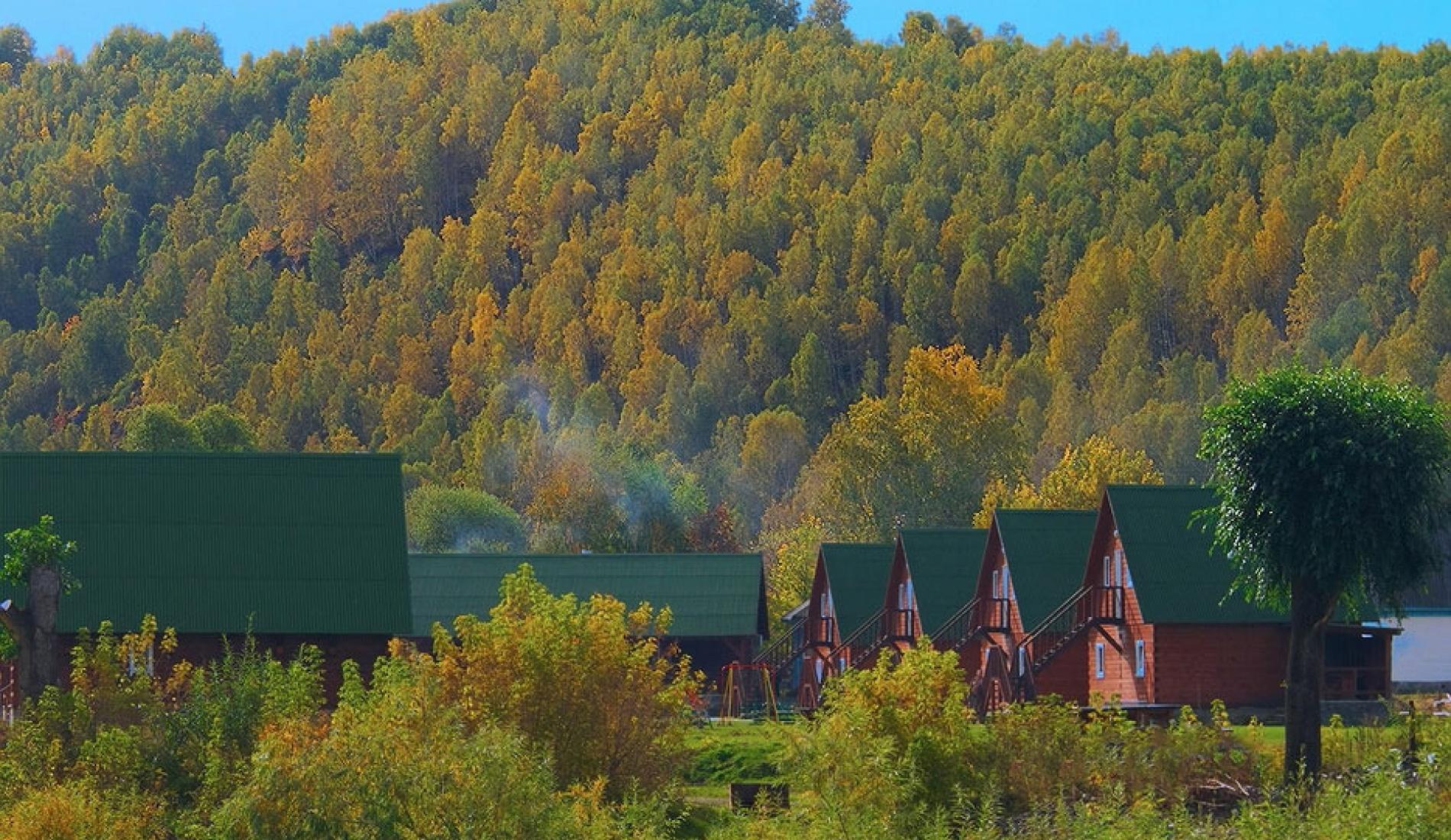 """База отдыха """"Медвежий угол"""" Алтайский край, фото 37"""