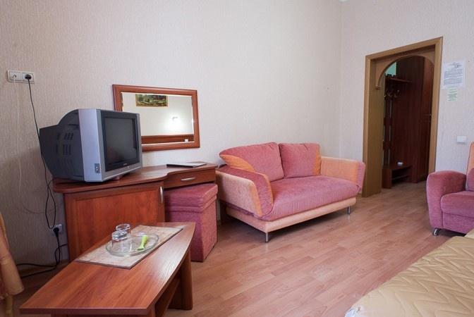 Дом отдыха «Ершово» Московская область Номер «Полулюкс» 2-местный 1-комнатный, фото 3
