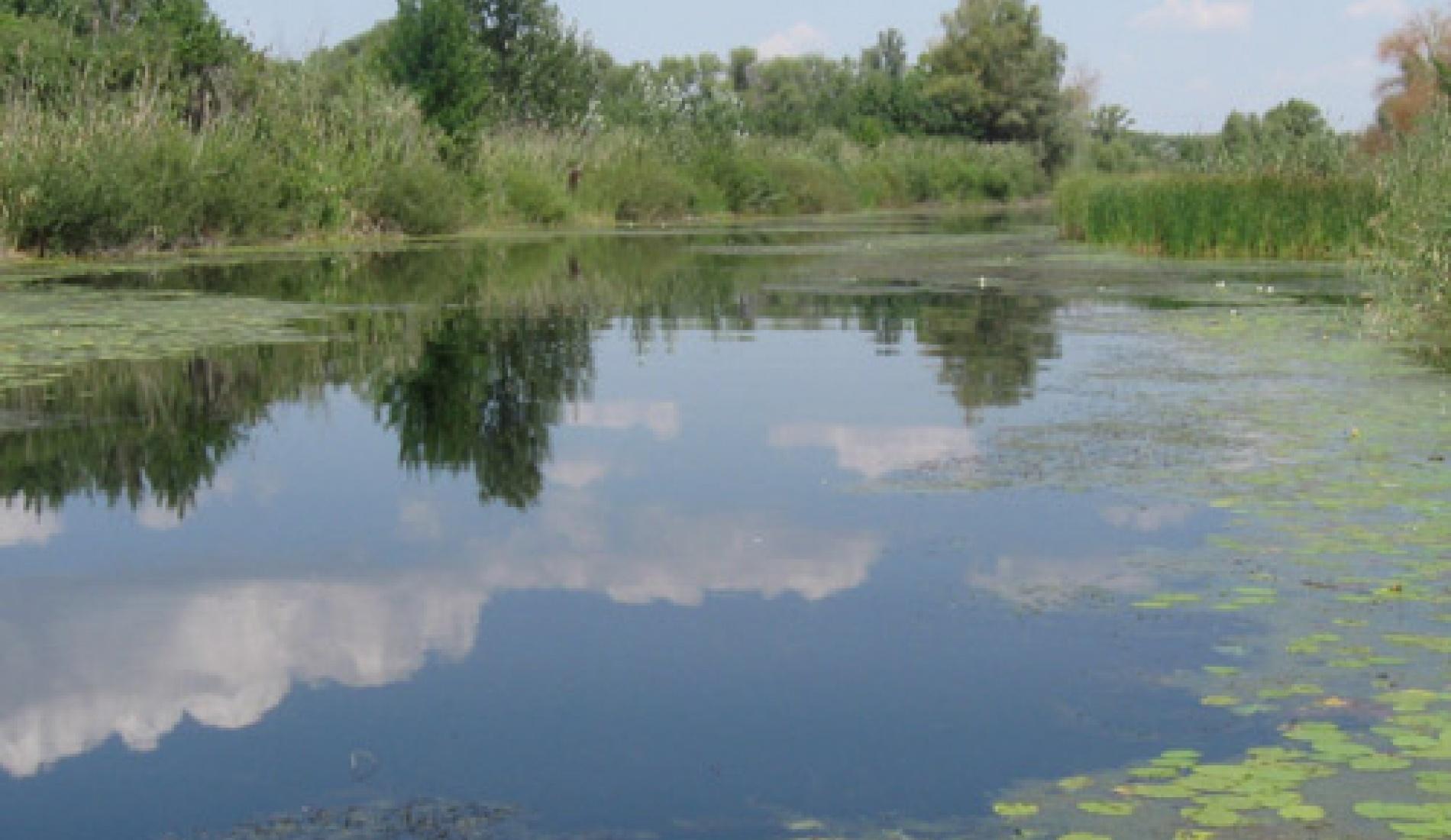 """Рыболовно-охотничья база """"Барс"""" Волгоградская область, фото 4"""
