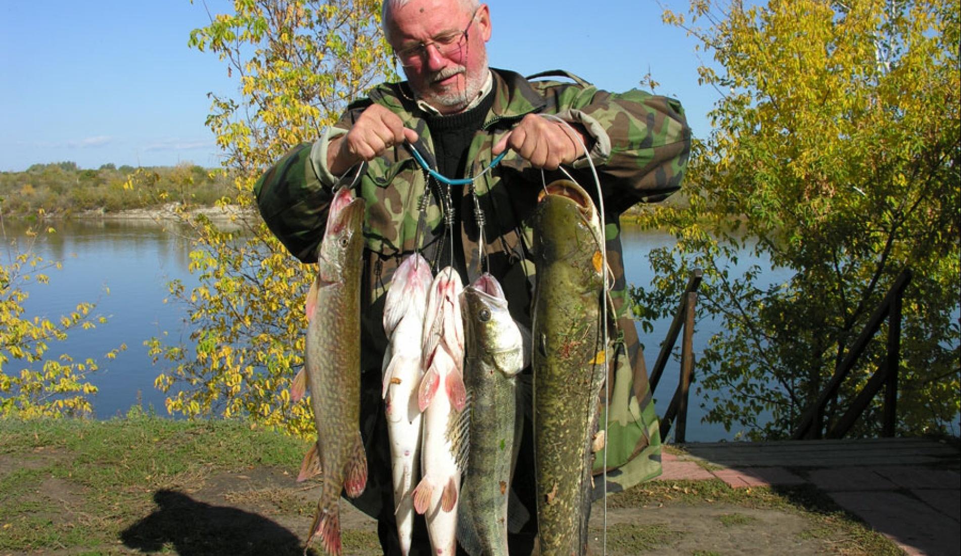 "Рыболовная база ""Рыба Зверь"" Волгоградская область, фото 7"