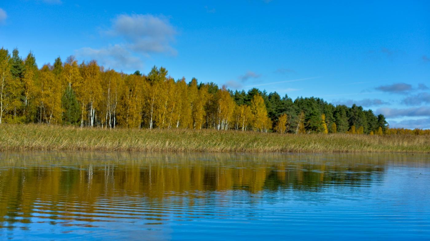 База отдыха «Селигер для Вас» Тверская область, фото 35