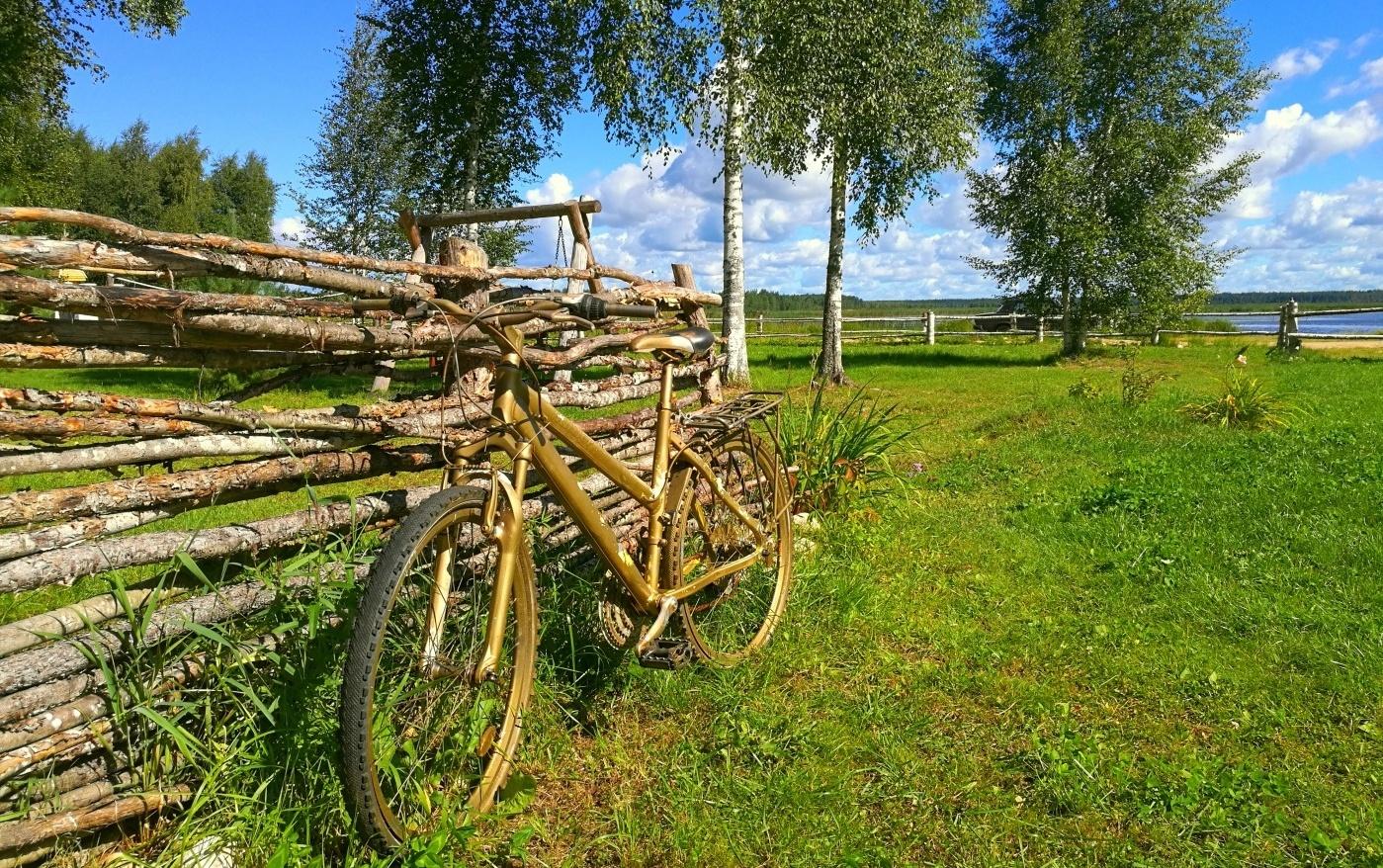 База отдыха «Селигер для Вас» Тверская область, фото 18
