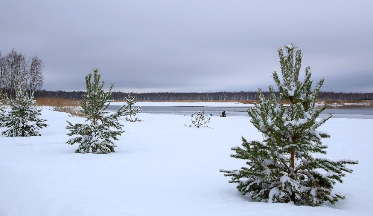 База отдыха «Селигер для вас» Тверская область, фото 49