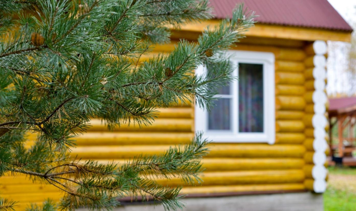 База отдыха «Селигер для Вас» Тверская область Дом №5, фото 3