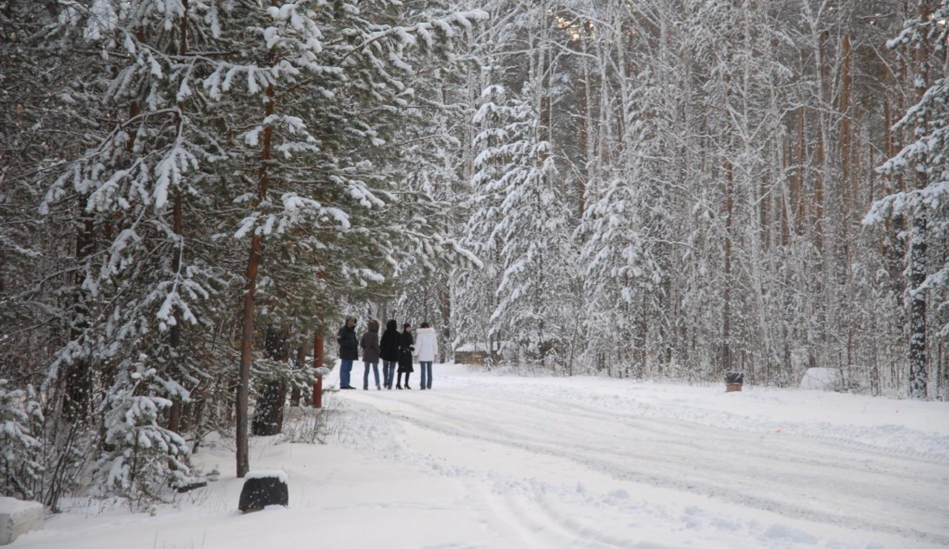 """Дом отдыха """"Звездный"""" Челябинская область, фото 5"""