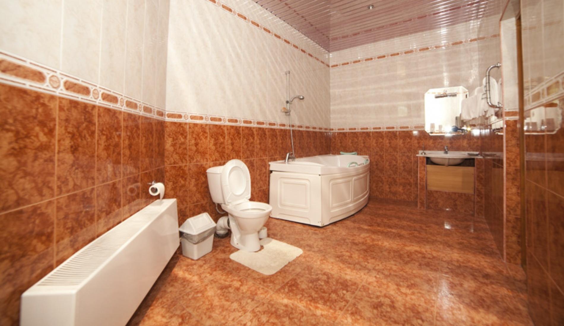 База отдыха «Улыбка» Белгородская область Номер «Люкс 2-комнатный» в коттедже, фото 2