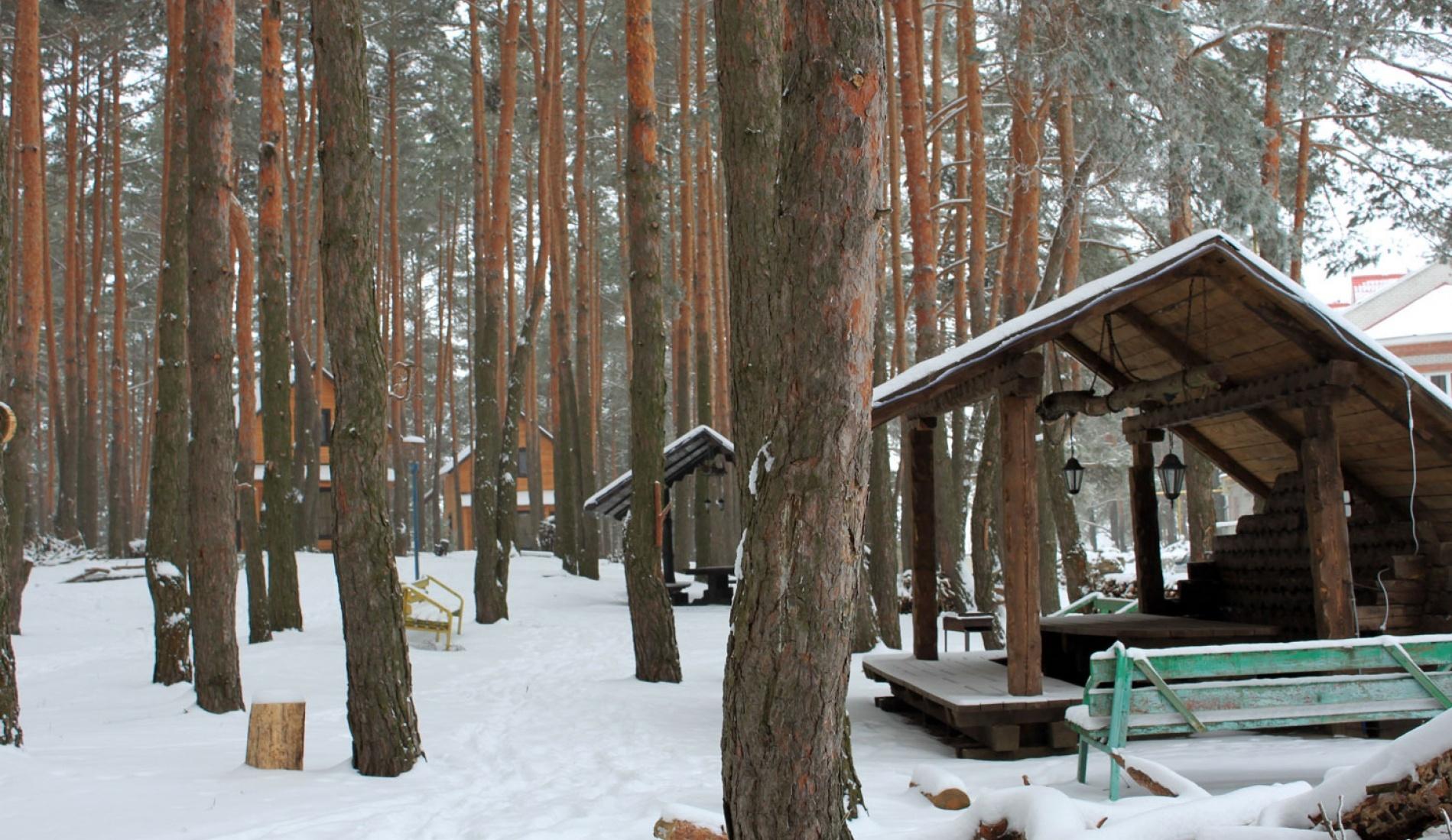 """База отдыха """"Аркадия"""" Белгородская область, фото 29"""