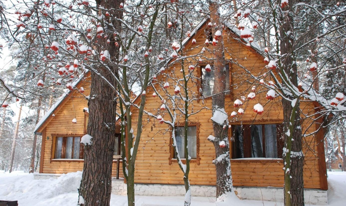 База отдыха «Улыбышево» Владимирская область, фото 6