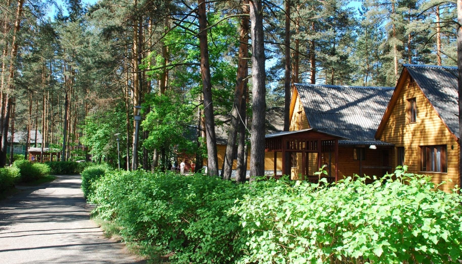База отдыха «Улыбышево» Владимирская область, фото 4