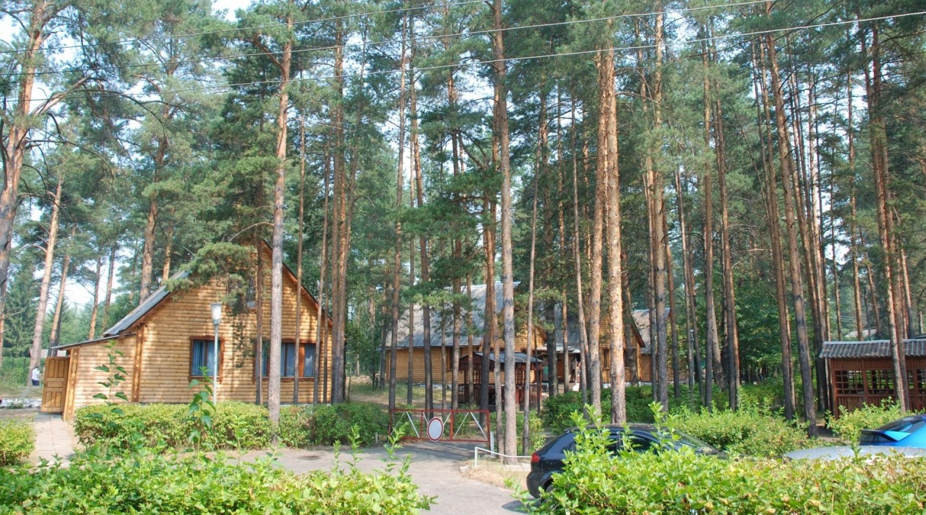 База отдыха «Улыбышево» Владимирская область, фото 5