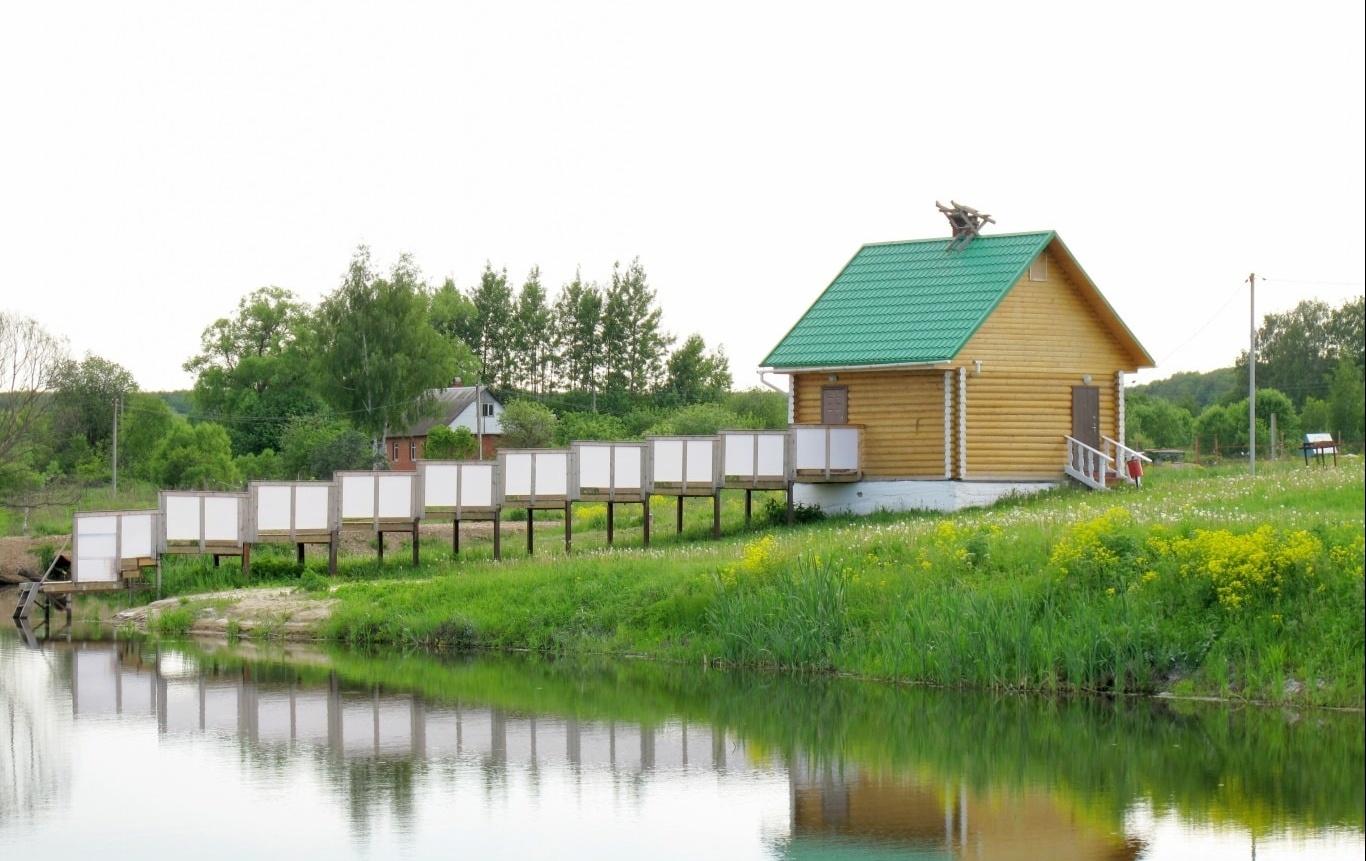 База отдыха Эко-парк «Рождествено» Калужская область, фото 13