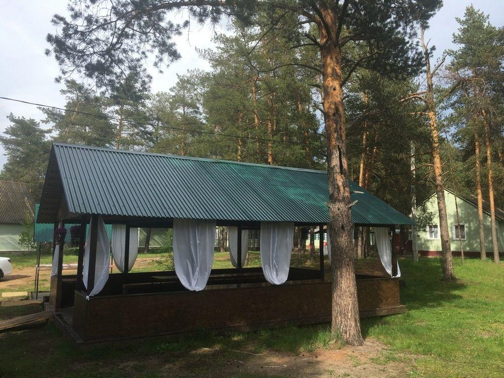 Парк-отель «Ладога» Владимирская область, фото 4