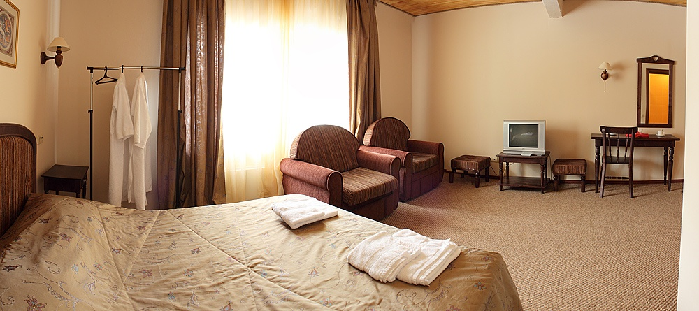 Гостиница «Артыбаш» Республика Алтай Студия, фото 3