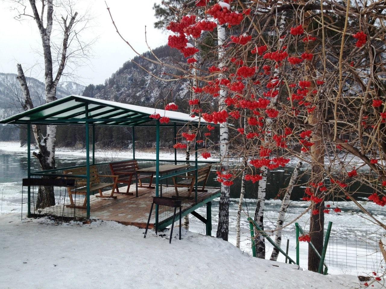 База отдыха «Тихий берег» Республика Алтай, фото 31