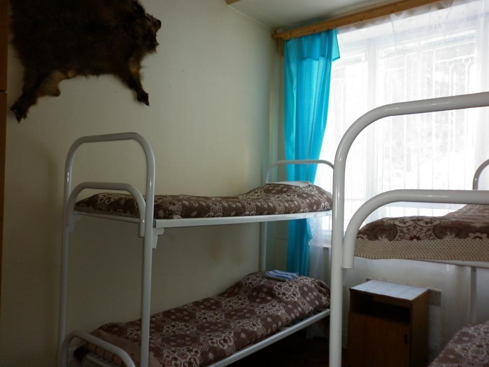 """База отдыха """"Ирма"""" Вологодская область """"Таверна Ирма"""", фото 2"""