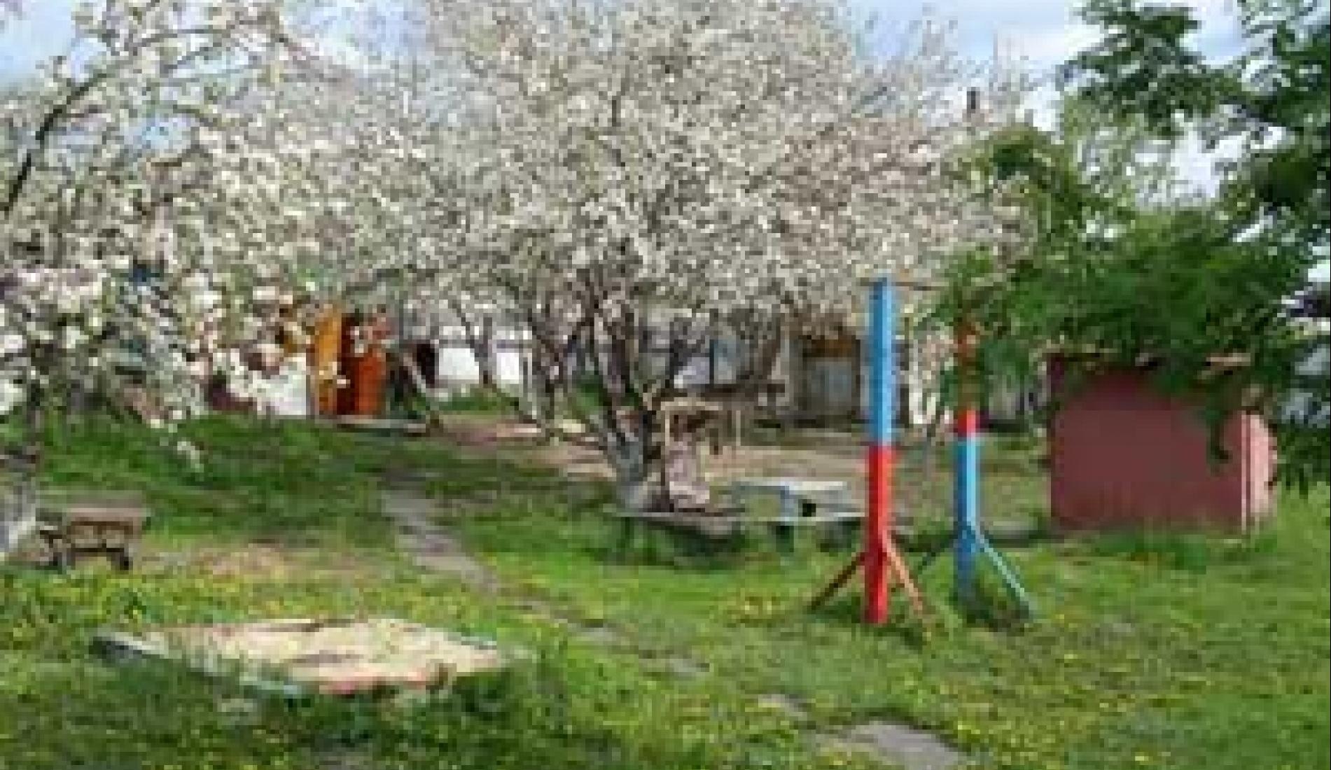 """Турбаза """"Дача"""" Ульяновская область, фото 9"""