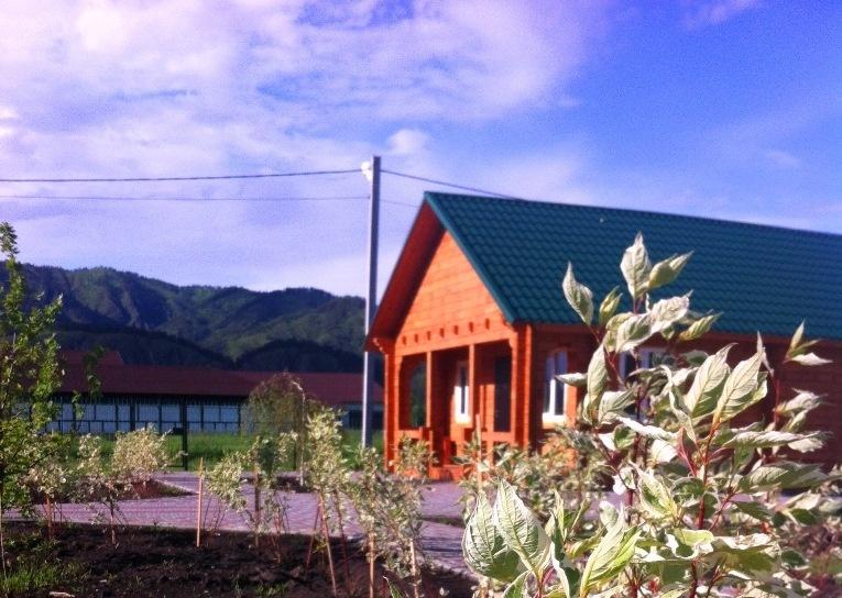 База отдыха «Барвиха» Республика Алтай, фото 5