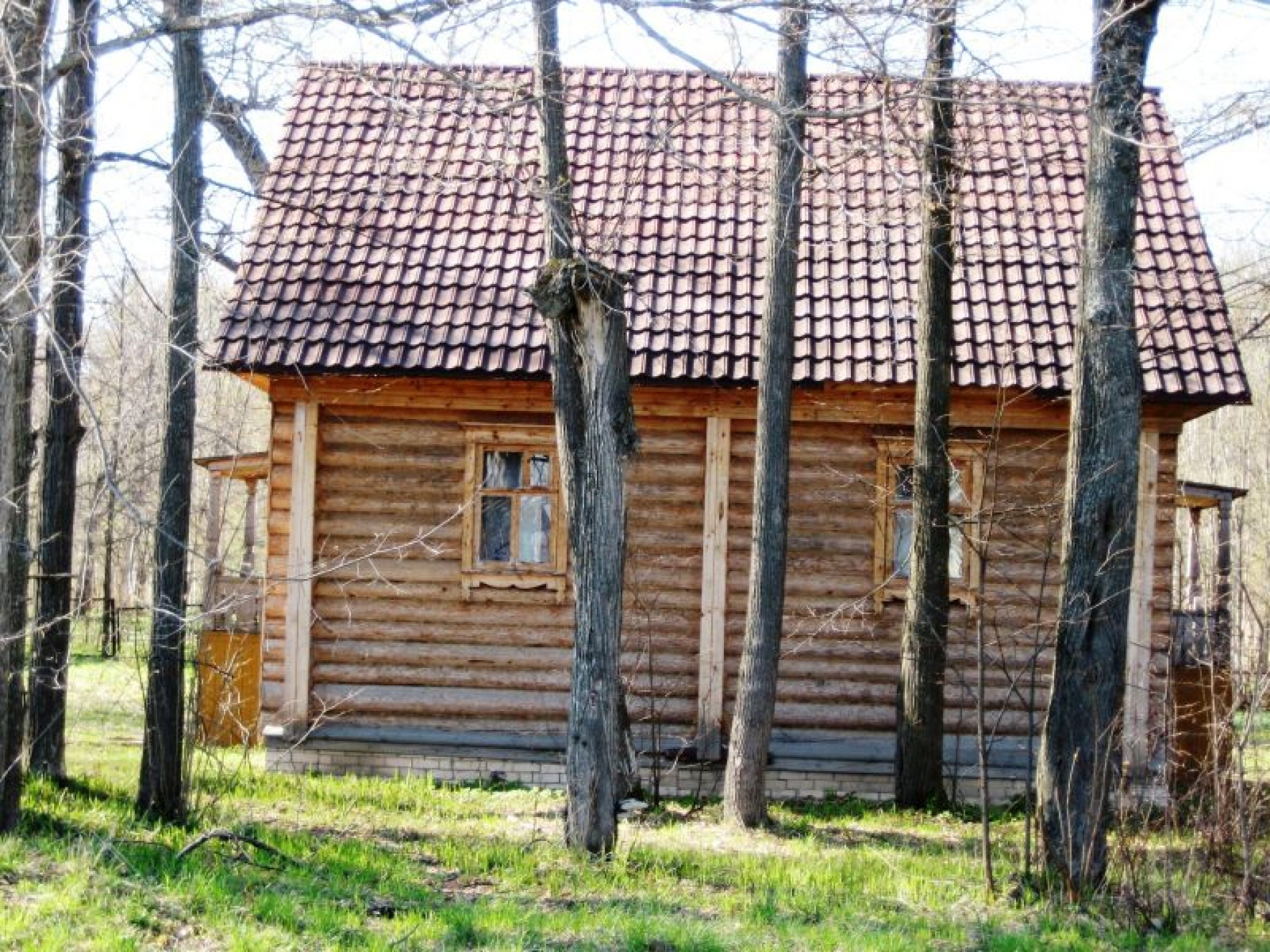 """База отдыха """"Ветлуга"""" Нижегородская область, фото 15"""
