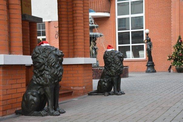 База отдыха «Самбия» Калининградская область, фото 25