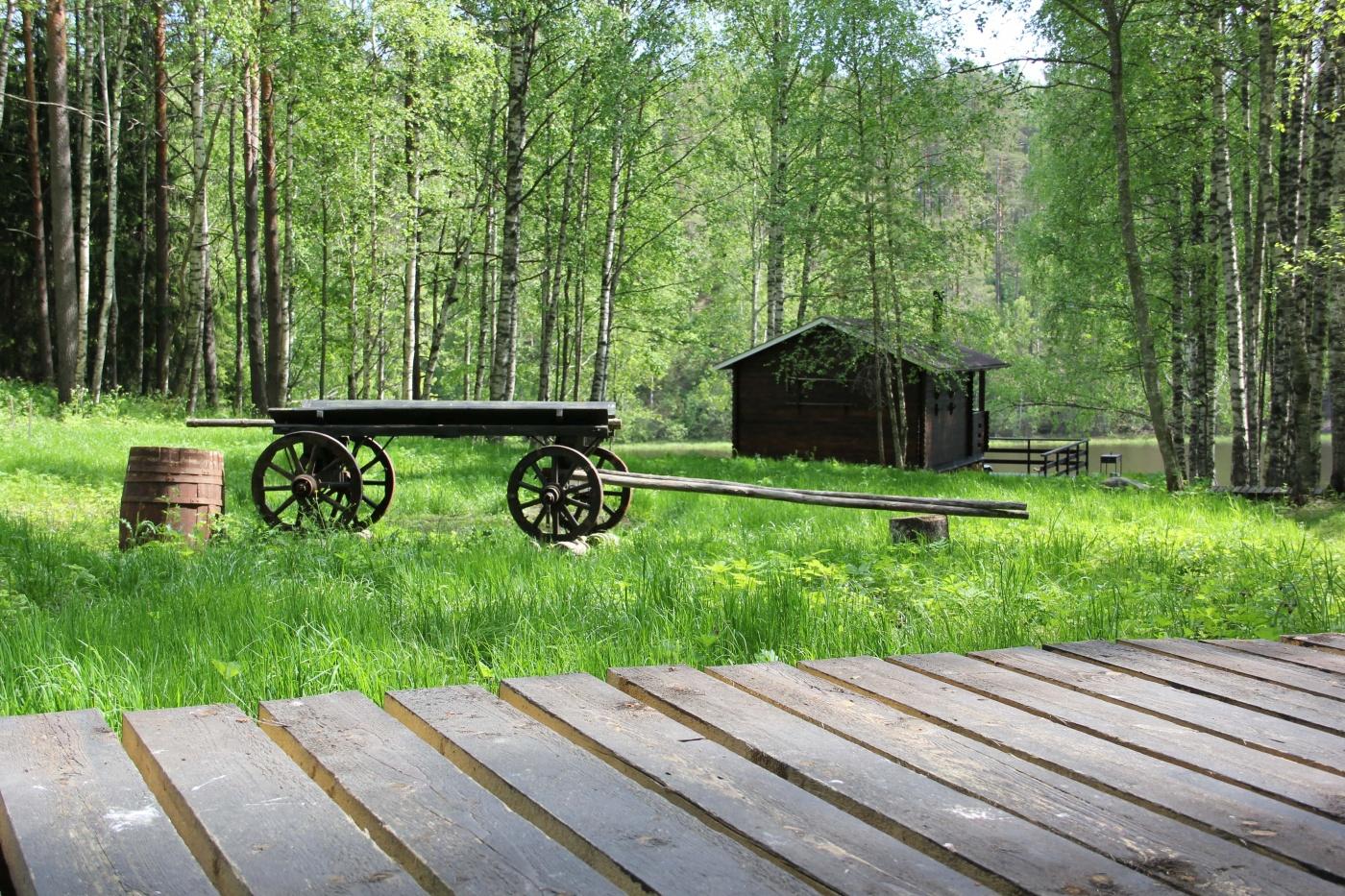База отдыха «Хутор Салокюля» Республика Карелия, фото 7