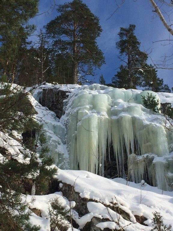 База отдыха «Хутор Салокюля» Республика Карелия, фото 57