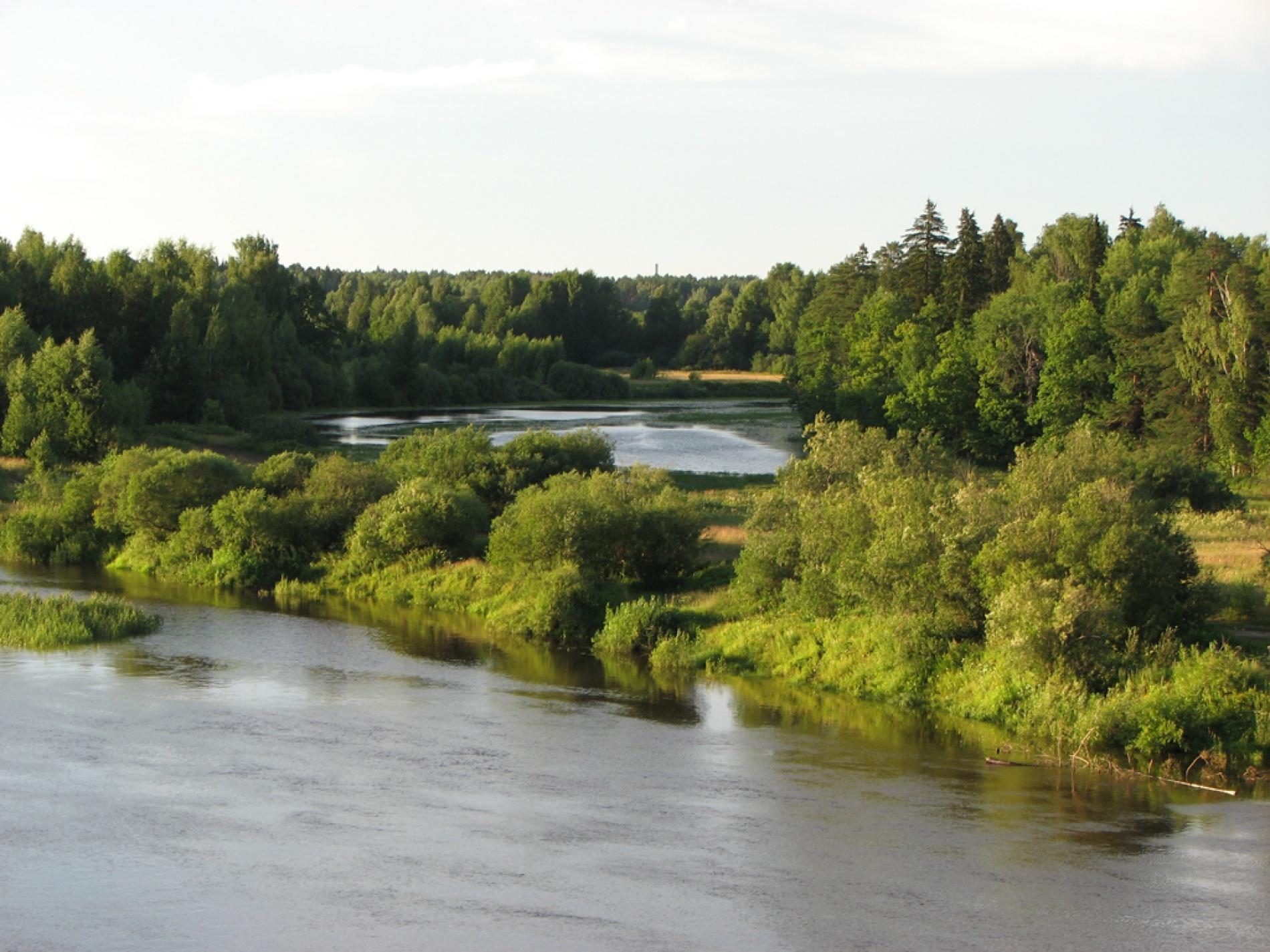 База отдыха «Ветлуга» Костромская область, фото 13