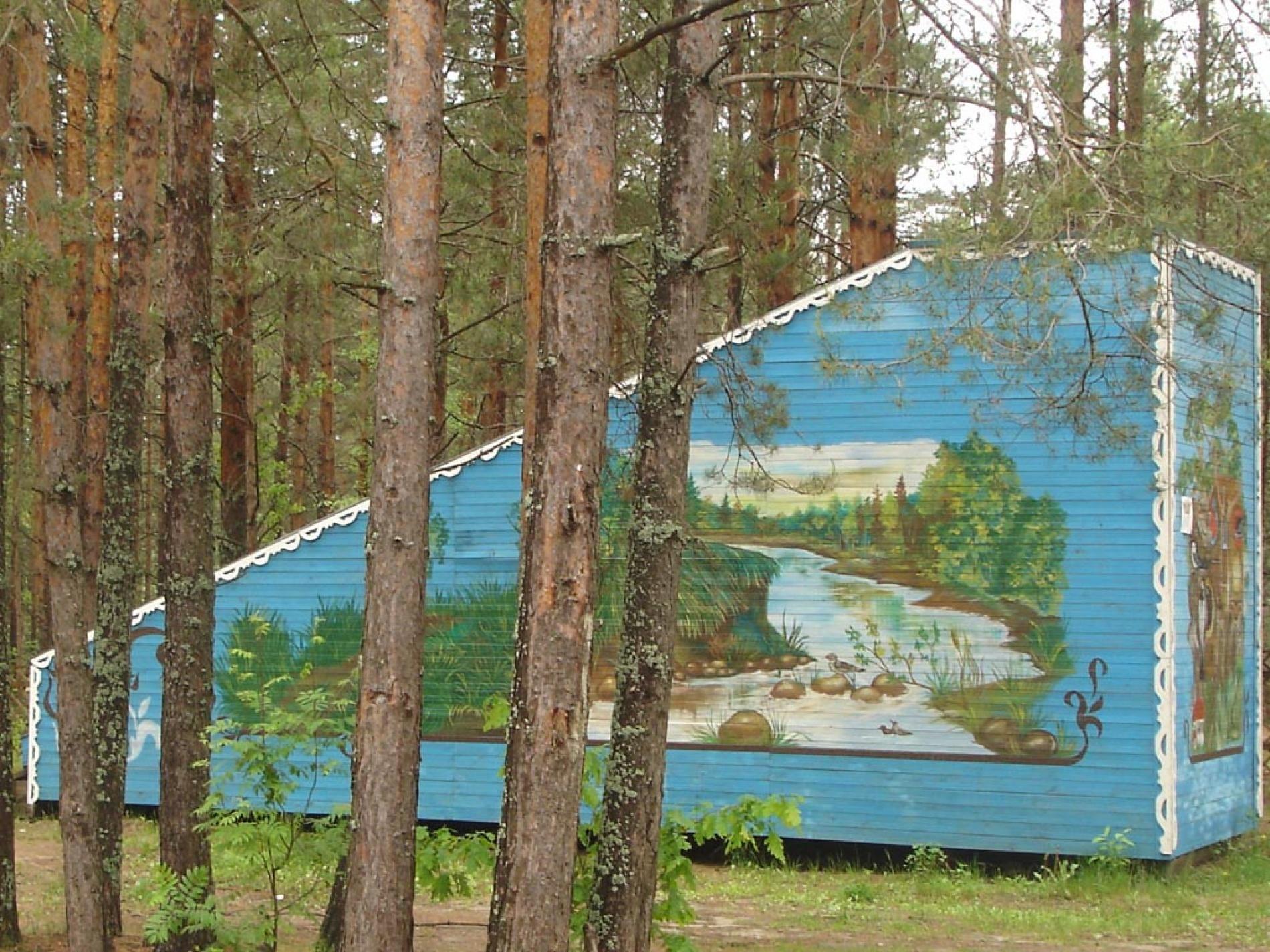 База отдыха «Ветлуга» Костромская область, фото 11