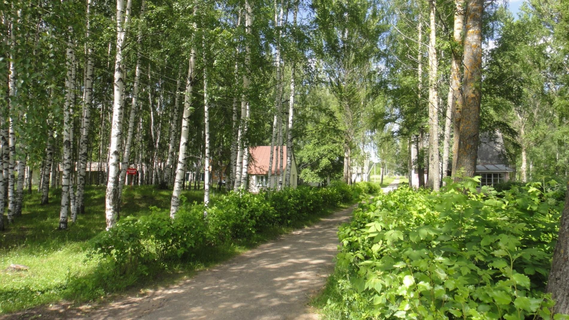 """Парк-отель """"Волжский прибой"""" Костромская область, фото 3"""