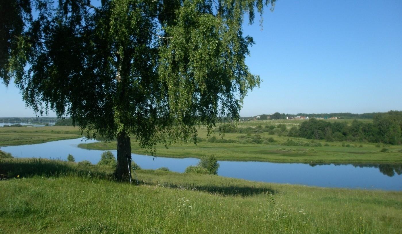 Парк-отель «Волжский прибой» Костромская область, фото 24