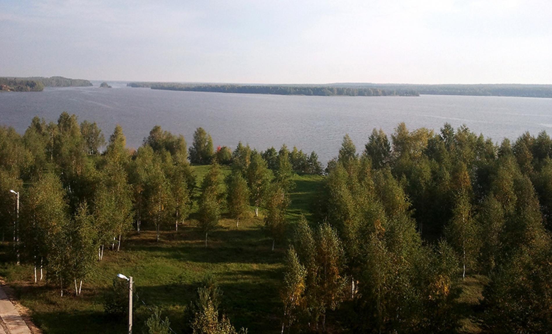 """База отдыха """"Белый Яр"""" Костромская область, фото 12"""