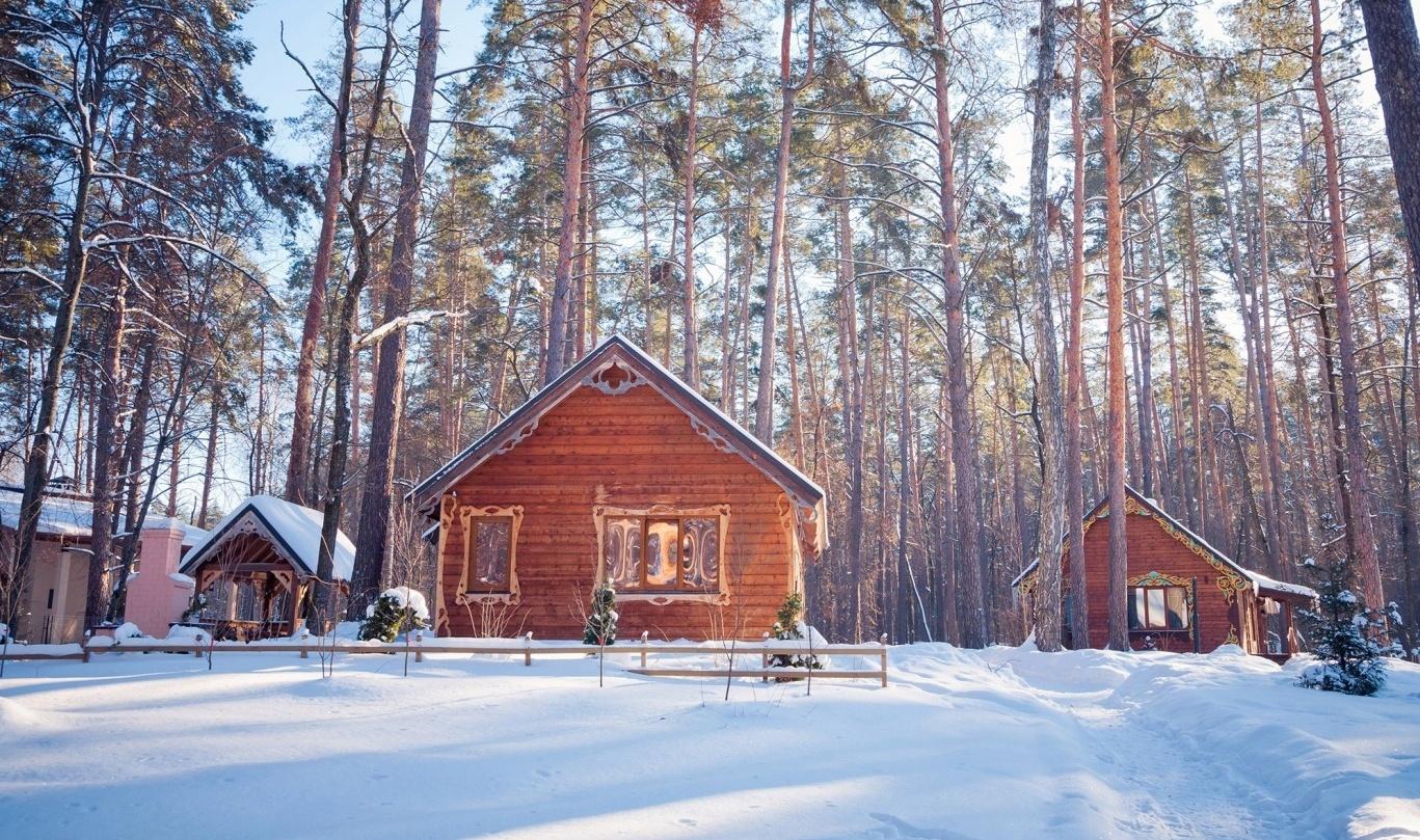 База отдыха «Лесная сказка» Воронежская область, фото 16