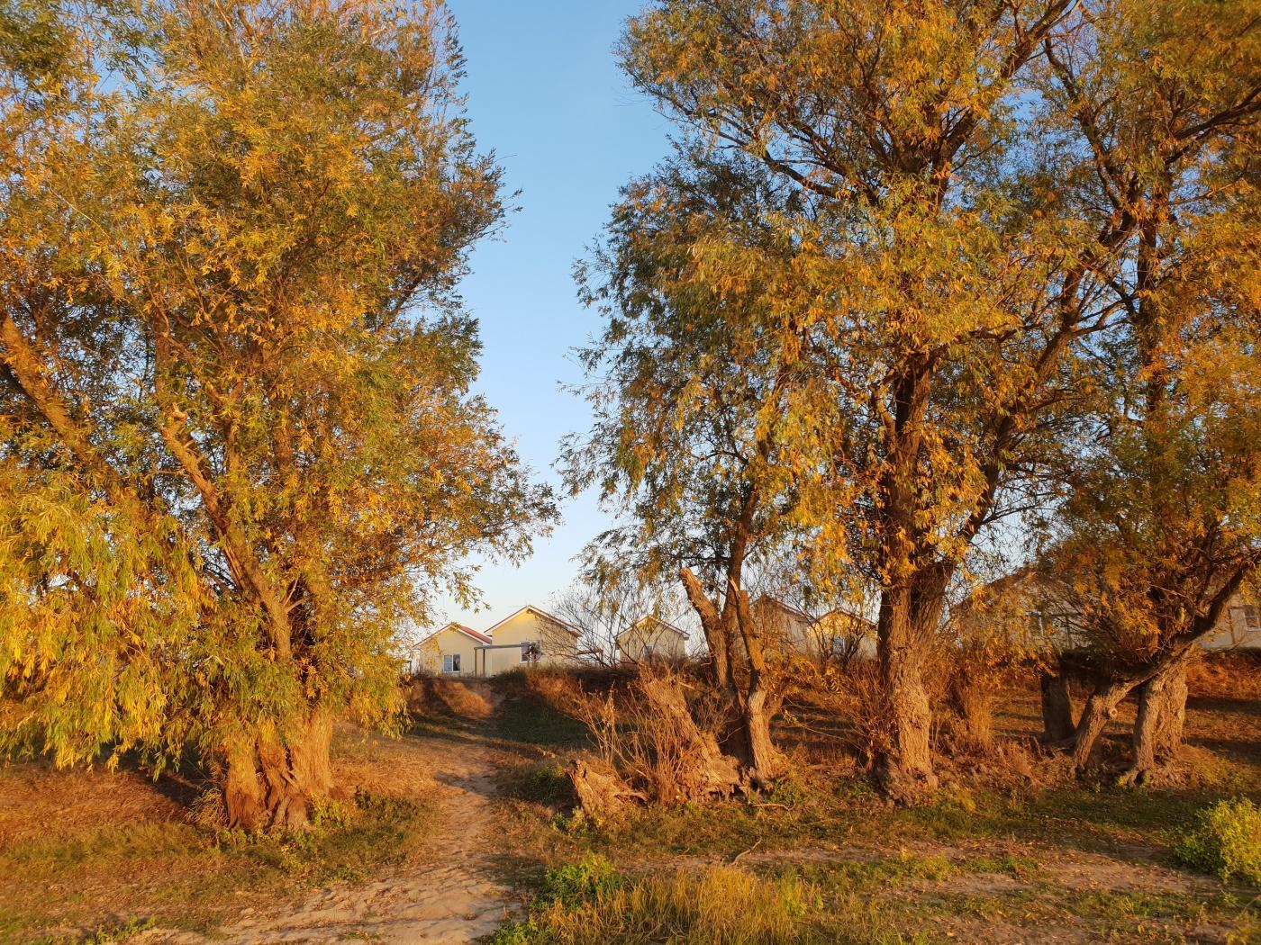 База отдыха «Наша Фазенда» Астраханская область, фото 48