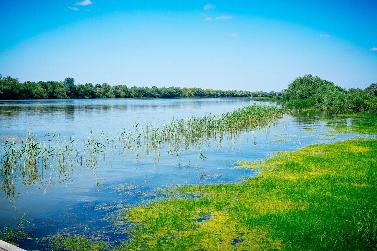 База отдыха «Наша Фазенда» Астраханская область, фото 29