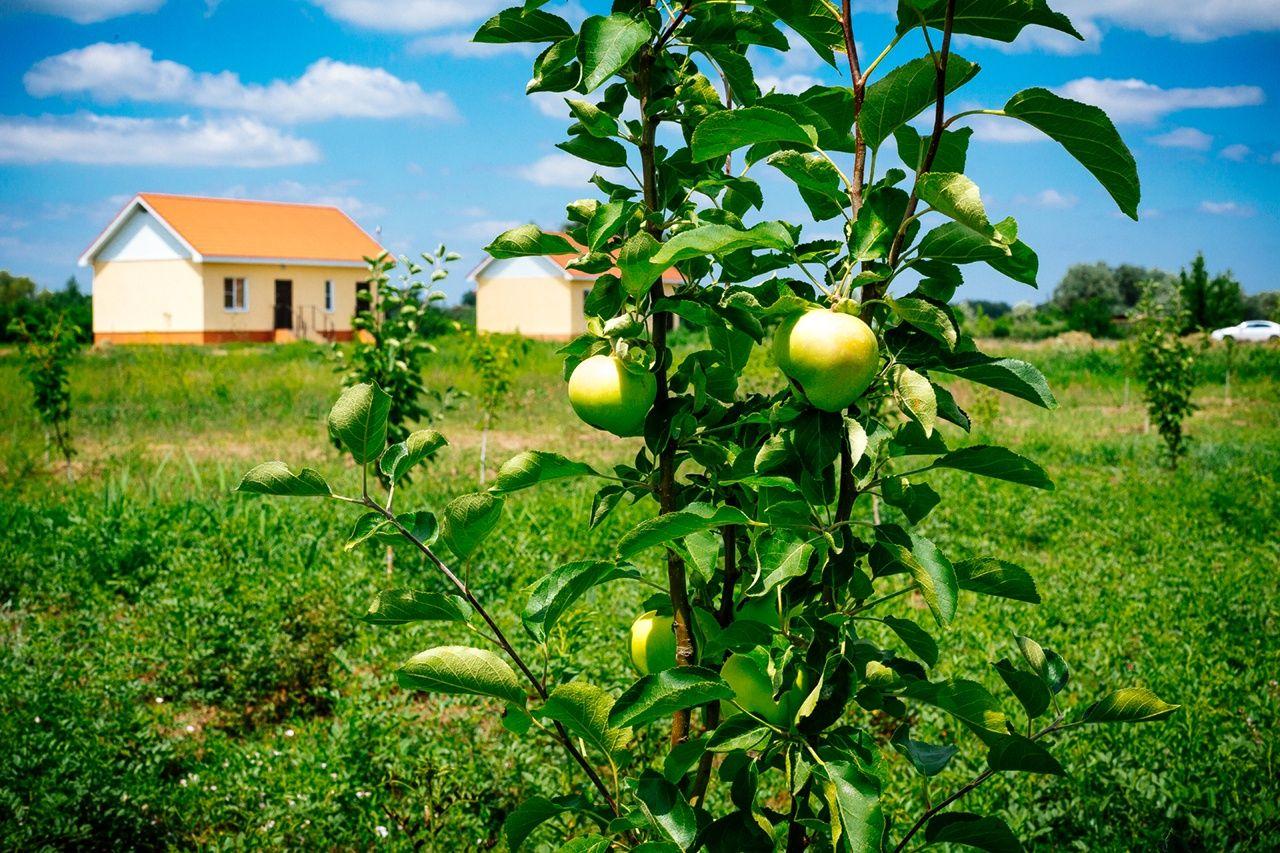 База отдыха «Наша Фазенда» Астраханская область, фото 16