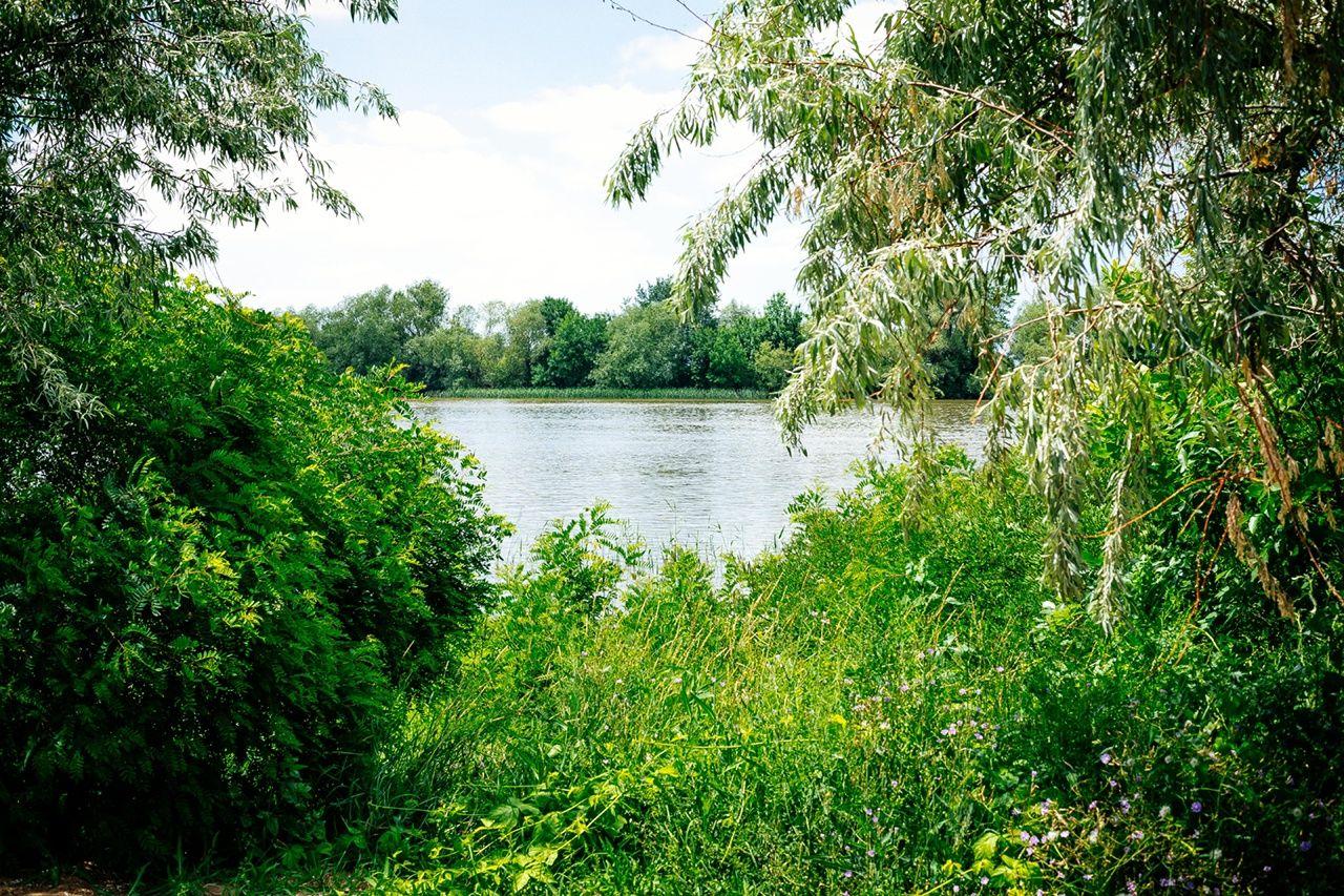База отдыха «Наша Фазенда» Астраханская область, фото 32