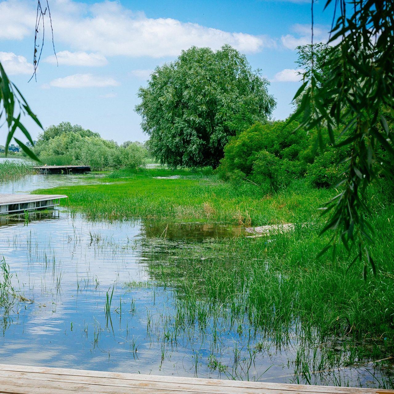 База отдыха «Наша Фазенда» Астраханская область, фото 33