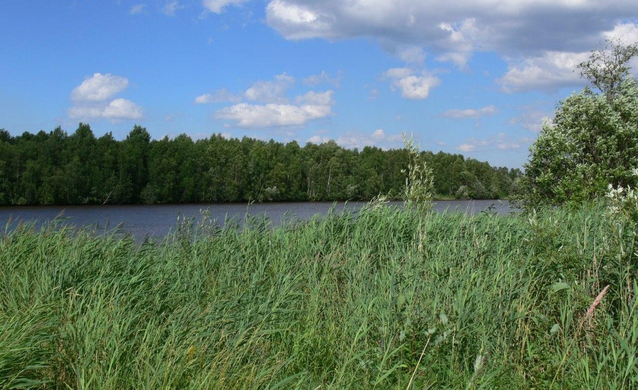 База отдыха «Лукоморье» Архангельская область, фото 12