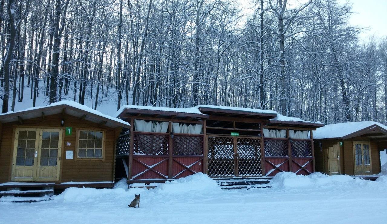 Спортивно-туристическая база «Форест Парк» Липецкая область, фото 14