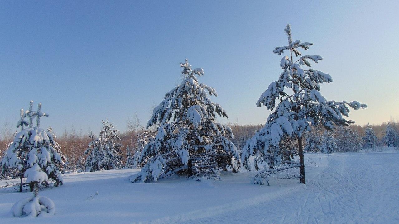 Спортивно-туристическая база «Форест Парк» Липецкая область, фото 13