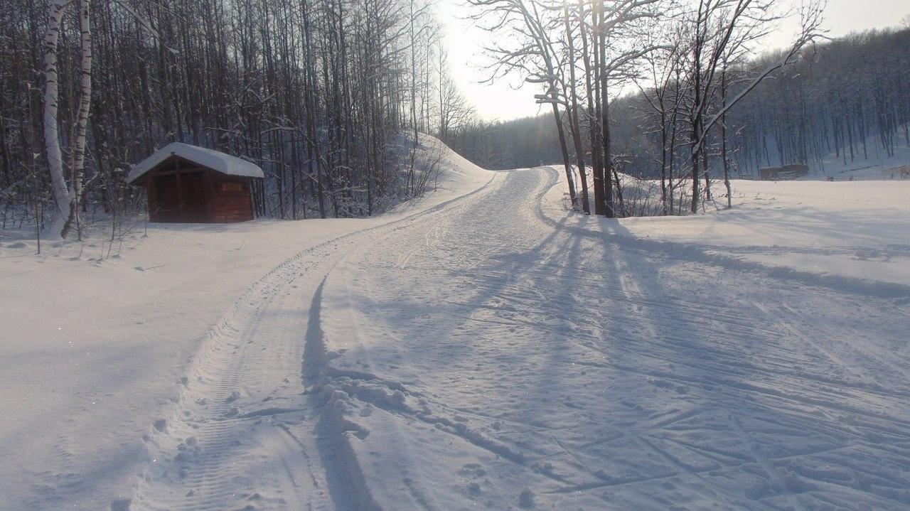 Спортивно-туристическая база «Форест Парк» Липецкая область, фото 12