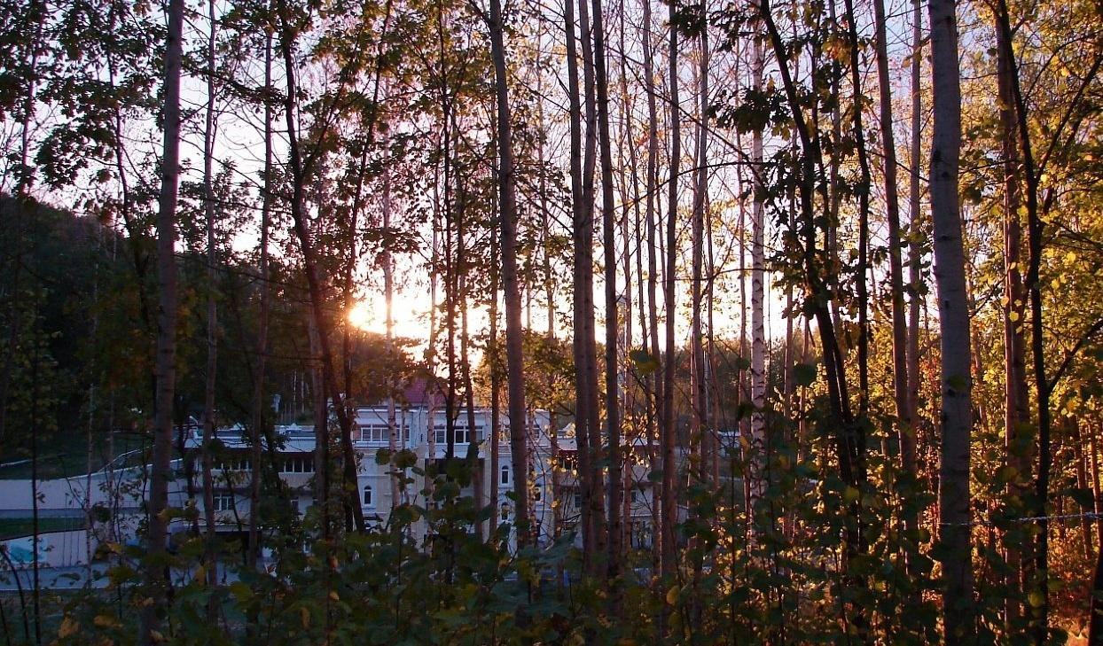 Спортивно-туристическая база «Форест Парк» Липецкая область, фото 10