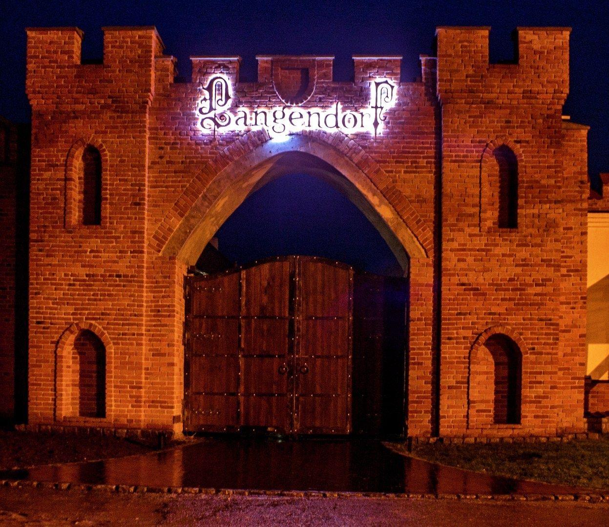 Замковое имение «LANGENDORF» Калининградская область, фото 16