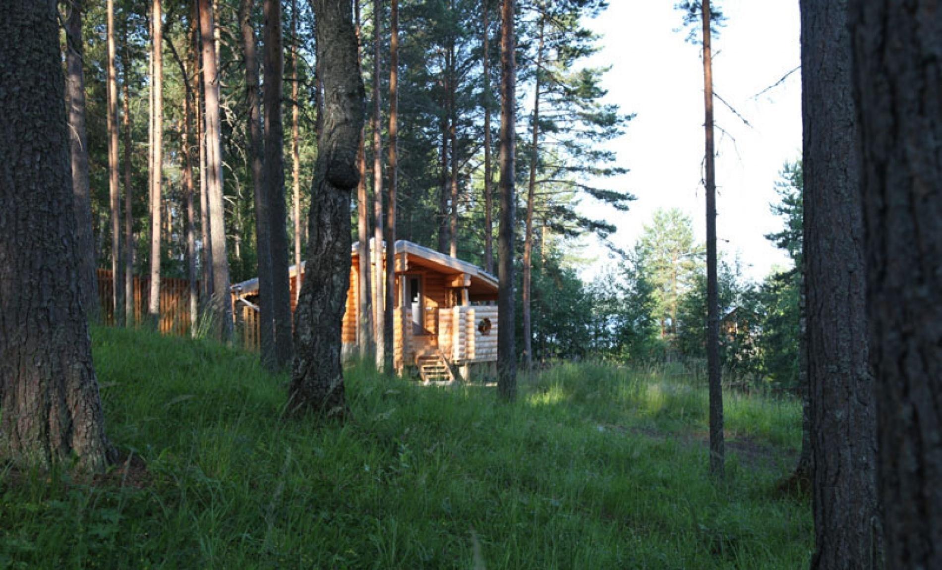 База отдыха «Шишки» Республика Карелия, фото 13
