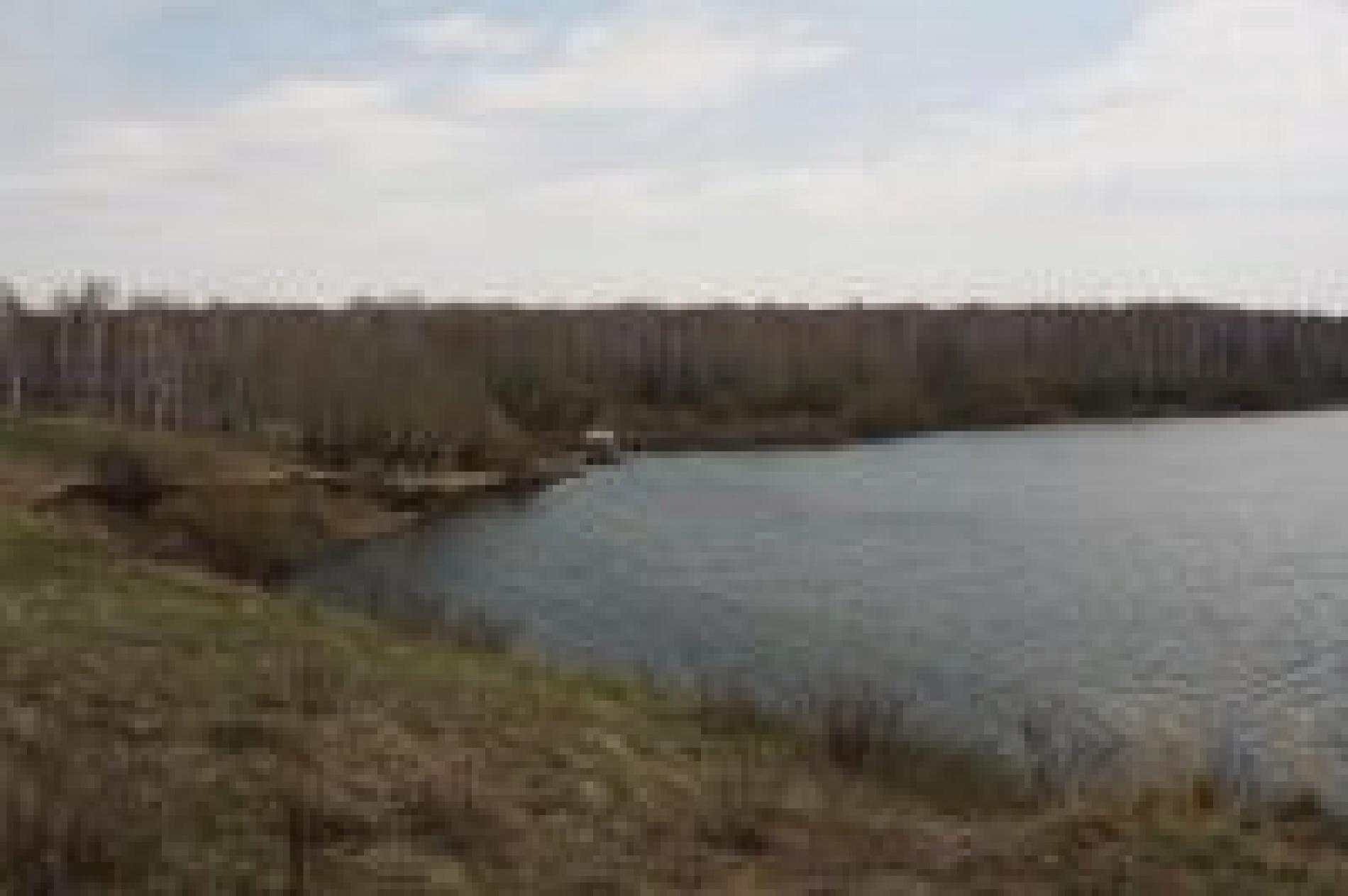 """База отдыха """"Пасека"""" Кемеровская область, фото 3"""