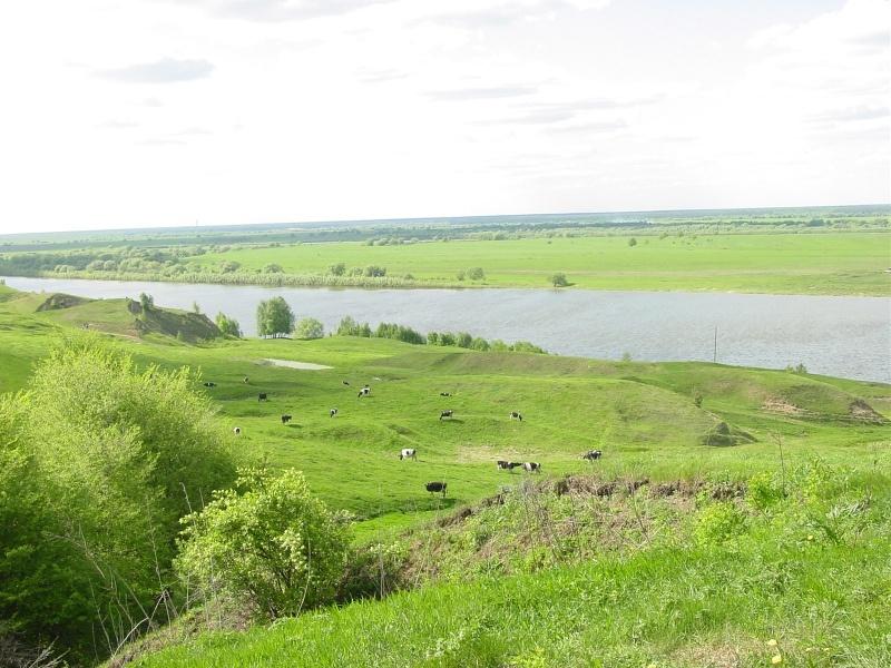 База отдыха «Барское подворье» Рязанская область, фото 2