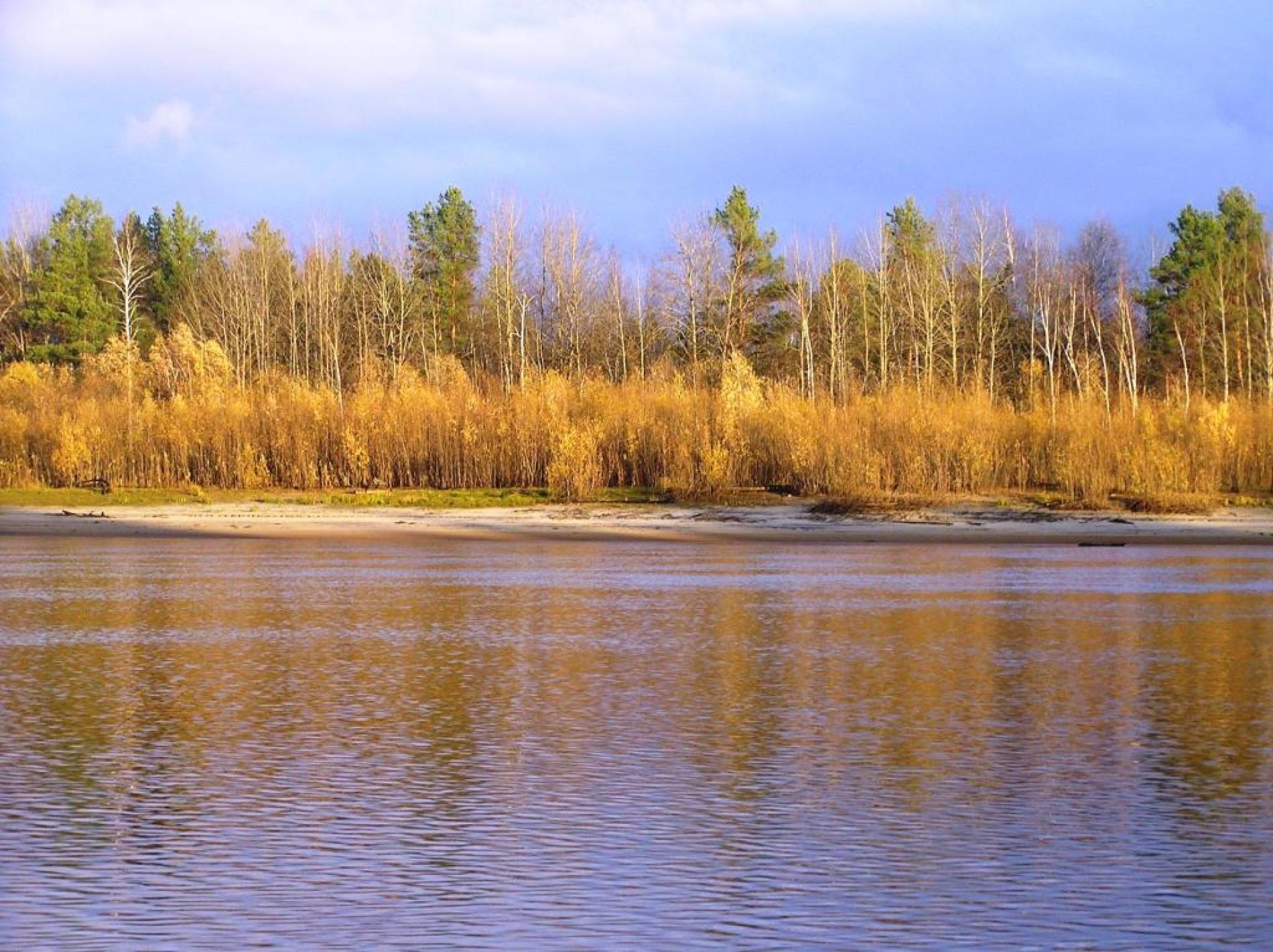 "База отдыха ""Конда"" Ханты-Мансийский автономный округ (Югра), фото 13"