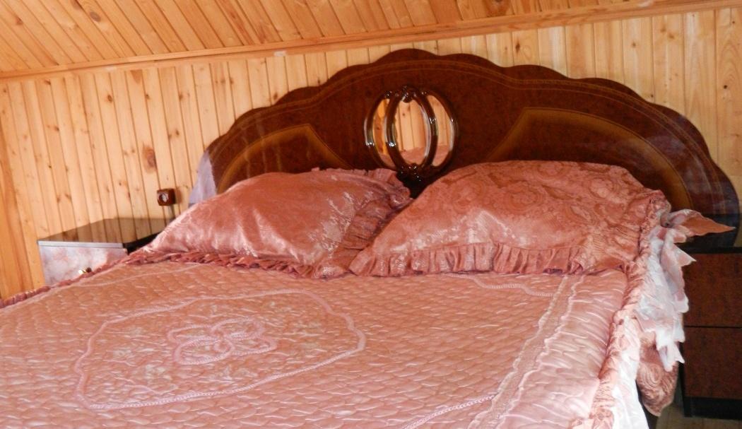 База отдыха «Белая гора» Пензенская область Домик VIP № 1 (4-х местный), фото 3