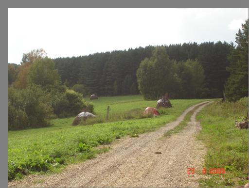 """База отдыха """"Хуторок 12 месяцев"""" Кемеровская область, фото 12"""