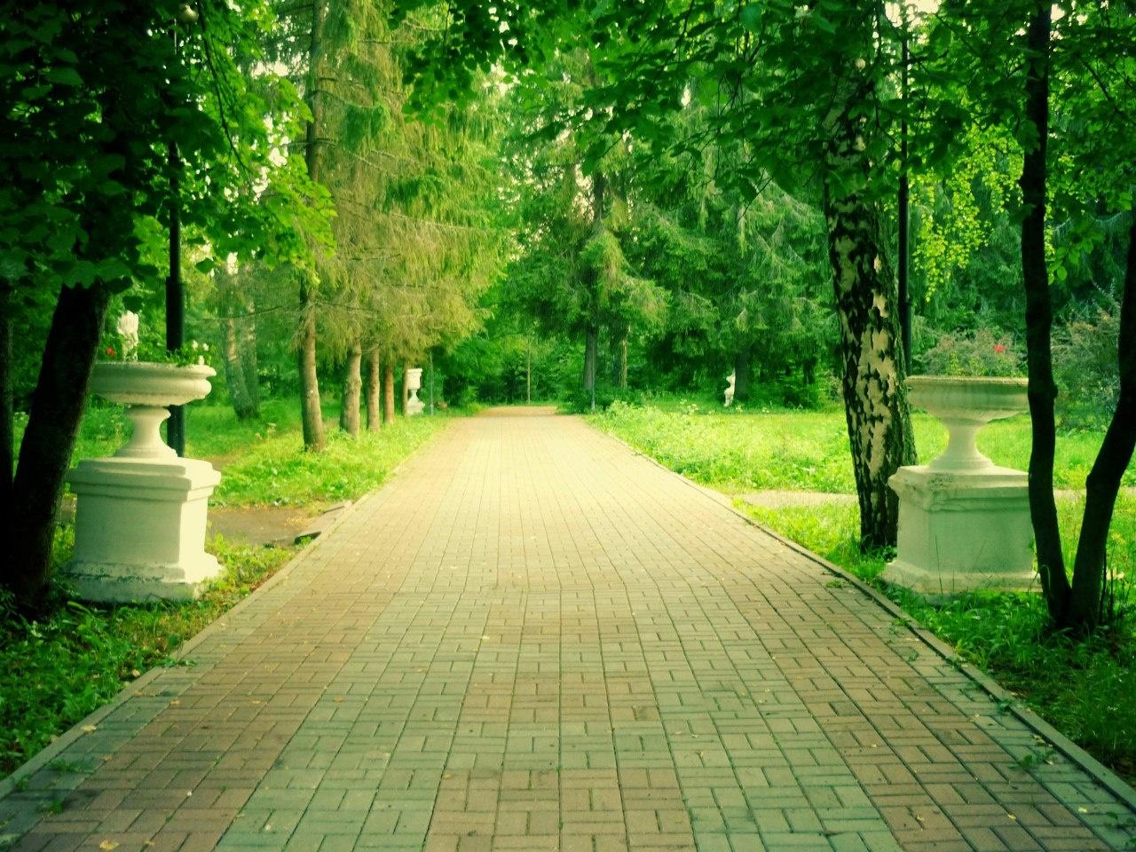 Парк-отель «Ярославль» Ярославская область, фото 10