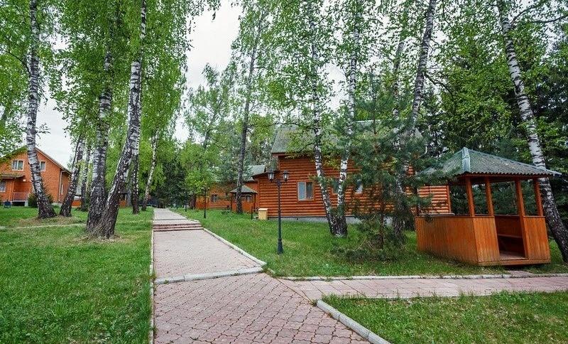 База отдыха «Березовая роща» Тульская область, фото 3